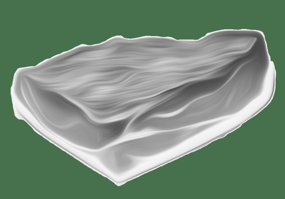 bauernspeck-icon